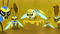Flash bees and their queen glare at Meadowbrook S7E20