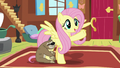 "Fluttershy ""animals are my field of expertise"" S7E5.png"