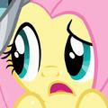 Fluttershy eye error S02E11.png