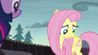 Fluttershy looking at her cutie mark S5E23
