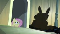 Fluttershy vê a sombra de 'Angel' T4E03