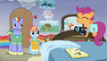 Scootaloo bouncing on Rainbow Dash's old bed S7E7.png