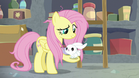 Angel hops onto Fluttershy's hoof S9E18