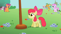 Apple Bloom looking at the flagpole S2E6.png