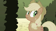 Applejack notice strange