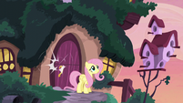 Door closes on Fluttershy S5E3