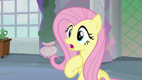 "Fluttershy ""I don't know how I keep winning"" S8E9"