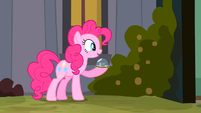 Pinkie Pie say so S2E18