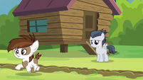 Pipsqueak crosses the camp-dividing line S7E21