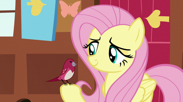 File:Red robin perches on Fluttershy's hoof S7E5.png