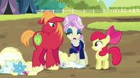 Registration pony passing judgment on Big Mac S5E17