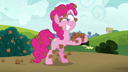 S07E04 Pinkie pokryta kolczastymi nasionami