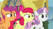 The Crusaders fail to convince Fluttershy S9E22