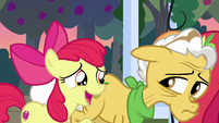 "Apple Bloom ""I didn't even know was missin'"" S7E13"