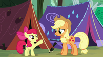 "Apple Bloom ""the better we get at camping"" S7E16"