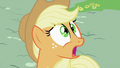 Applejack 'Somepony' S2E06.png