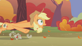 Applejack being dragged back near the finish line S1E13.png