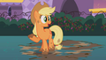 Applejack in mud S2E9.png