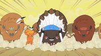 Buffalos charging S1E21