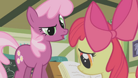 Cheerilee questioning Apple Bloom S1E12
