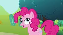 Derpy Pinkie Pie S02E19