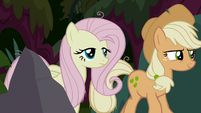 Fake Fluttershy and AJ following Chrysalis S8E13