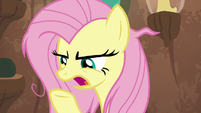 "Fluttershy ""what do you mean that's the problem?"" S9E18"