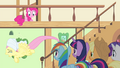 Fluttershy flying while crying S4E14.png