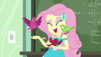 Fluttershy laughing with her bird friends EGDS10