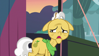 Grand Pear overcome with guilt S7E13