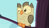 Owlowiscious winking S4E23