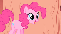 Pinkie Pie 'you're gonna do it again' S1E16