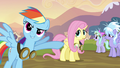 Rainbow Dash Fluttershy Goggles Point S02E22.png