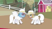 Rainbow Dash and Applejack beekeeper suit reveal S4E03
