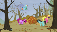 Rainbow sees ponies moving the leaves S5E5