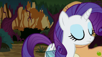Rarity walks past Applejack in disappointment S8E13