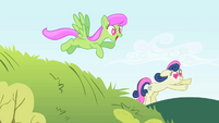 The ponies run towards Smarty Pants S2E03
