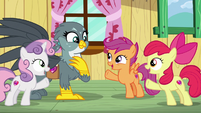 Crusaders induct Gabby into the CMC S6E19