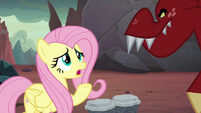 "Fluttershy ""but why?"" S9E9"