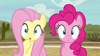 Fluttershy and Pinkie Pie in dull surprise S6E18