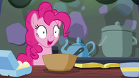 Pinkie Pie --instruction following starting...-- S6E21