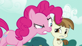 Pinkie looks at Featherweight very closely S5E19.png