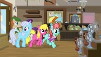 Ponies entering Mr. Breezy's store S7E19