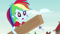 "Rainbow Dash ""end up in the woods again"" EG4"