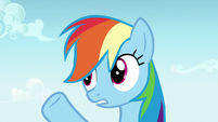 Rainbow Dash -working and napping- S7E14