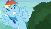 Rainbow Dash groans with intense anger S8E17