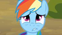 Rainbow Dash having regrets S3E09