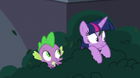 Twilight and Spike hiding in the bushes S9E5