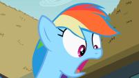 201px-Rainbow Dash surprised S2E08