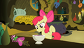 Apple Bloom Agree S2E6.png